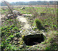 TM0188 : A WW2 air raid shelter by Evelyn Simak