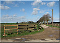 TL2642 : The road to Dunton Lodge Farm by John Sutton
