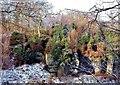 TQ5535 : Eridge Rocks in winter by Patrick Roper