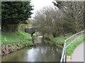 SS2103 : The River Neet near Helebridge by Gareth James
