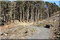 NX4079 : Southern Upland Way by Billy McCrorie