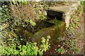 SX1459 : Spring and trough, Couch's Mill by Derek Harper