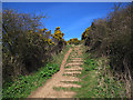 TA0390 : Steps up Long Nab by Stephen Craven