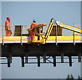 "TG1615 : The ""green"" bridge under construction by Evelyn Simak"