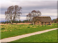 NH7444 : Culloden Battlefield, Leanach Cottage by David Dixon