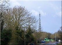 TL3959 : Telecommunication Mast by N Chadwick