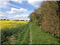 SP6728 : Footpath by Dave Thompson