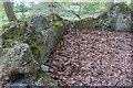 TQ2897 : Noddins Well, Trent Park, Enfield by Christine Matthews