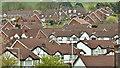 J3668 : Suburban rooftops, Cairnshill, Belfast (April 2017) : Week 16