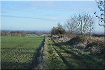 TL3858 : Wimpole Way by N Chadwick