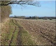 TL3958 : Whitwell Way by N Chadwick