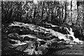 SH7657 : Swallow Falls detail by John Winder