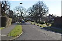 TL4058 : St Peter's Rd by N Chadwick