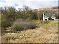 NN1178 : Scrubland beside house on west side of B8004 by Trevor Littlewood