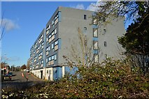 TL4258 : West Cambridge Site by N Chadwick