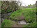 SE0335 : Minor stream flowing into Bridgehouse Beck by Stephen Craven