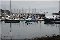 SX4853 : Queen Anne's Battery Marina by N Chadwick