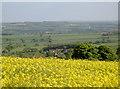 ST5764 : Echos in the landscape by Neil Owen