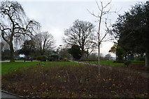 SX4555 : Devonport Park by N Chadwick