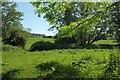 ST4200 : Jubilee Trail near Laverstock Farm by Derek Harper