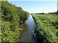 TQ8913 : Royal Military Canal by PAUL FARMER