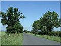 TL2741 : Ashwell Road towards Guilden Morden by JThomas