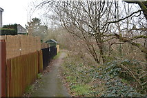 SX4962 : Suburban path by N Chadwick