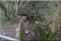 SX5061 : Stream in Widewell Wood by N Chadwick