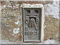SW8950 : Ordnance Survey Flush Bracket S6928 by Peter Wood