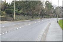 SX4960 : Tavistock Rd by N Chadwick