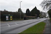 SX4960 : Tavistock Rd, A386 by N Chadwick