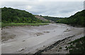ST5574 : River Avon at Low Tide by Anne Burgess
