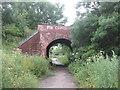 SE4405 : Bridge under the dismantled railway west of Rectory Lane, Thurnscoe by John Slater
