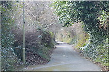 SX5058 : Footpath, Estover by N Chadwick