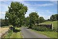 SE2357 : Barse Beck Lane near West Syke Green Farm by Mark Anderson