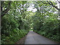 SW6429 : Minor road towards Sithney Green by JThomas