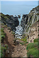 SS4445 : North Devon : Windy Cove : Week 28