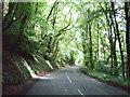 SW7025 : Gweek Drive towards Gweek by JThomas