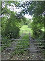 ST6867 : Track leading off Bristol and Bath cycle path by David Smith