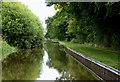 SJ5847 : Llangollen Canal west of Wrenbury in Cheshire by Roger  Kidd