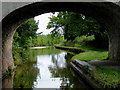 SJ5948 : Llangollen Canal north of Wrenbury in Cheshire by Roger  Kidd