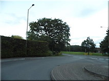 SU5268 : Roundabout on Foxglove Way, Thatcham by David Howard