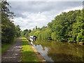 SJ8842 : Trent & Mersey Canal by Brian Deegan