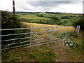 SO5815 : Field gates, Church Hill, English Bicknor by Jaggery
