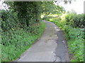 SE2357 : Barse Beck Lane heading south-westward by Peter Wood