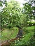 SS9607 : The Burn River near Underleigh by David Smith