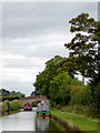 SJ6154 : Llangollen Canal north of Burland in Cheshire by Roger  Kidd