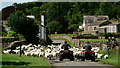 NY1203 : Sheep in Nether Wasdale by Peter Trimming