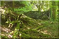 SX7168 : Ruin near Holy Brook by Derek Harper