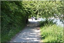 SP5105 : Thames Path by N Chadwick